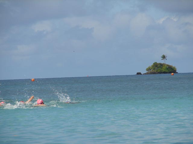 Palau Shell Rainbow Swim